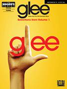 Cover icon of Bust Your Windows sheet music for voice and piano by Glee Cast, Miscellaneous, Jazmine Sullivan and Salaam Remi, intermediate