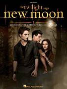 Cover icon of New Moon (The Meadow) sheet music for piano solo by Alexandre Desplat, easy