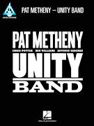 Cover icon of New Year sheet music for guitar (tablature) by Pat Metheny, intermediate
