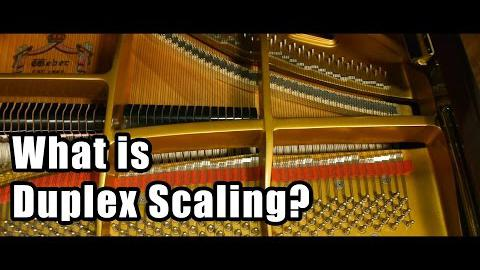 What is Duplex Scaling?