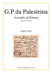 Cover icon of Ascendo ad Patrem (single parts) sheet music for five voices or choir by Giovanni Perluigi Da Palestrina